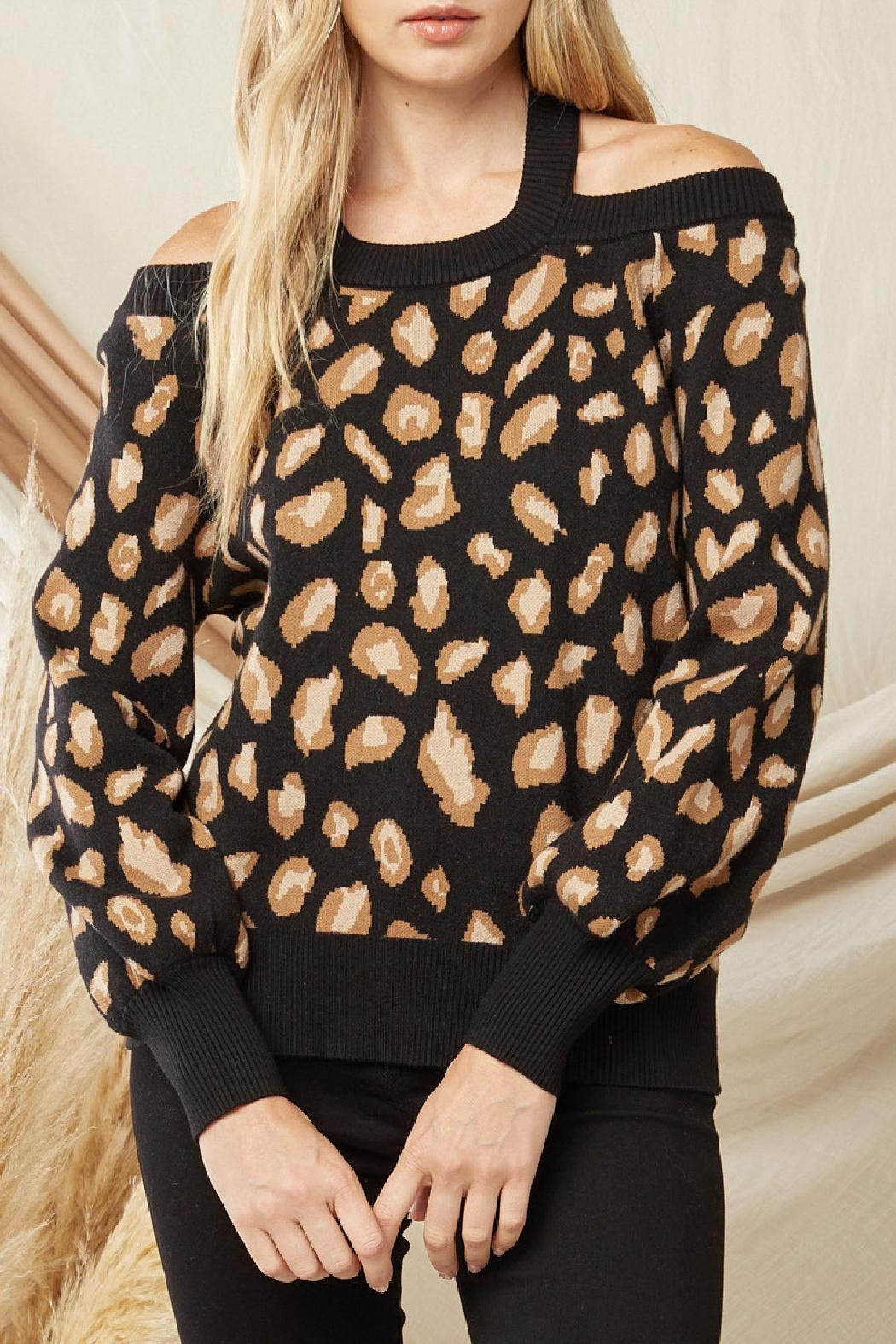 Entro Leopard Print Sweater - Front Cropped Image