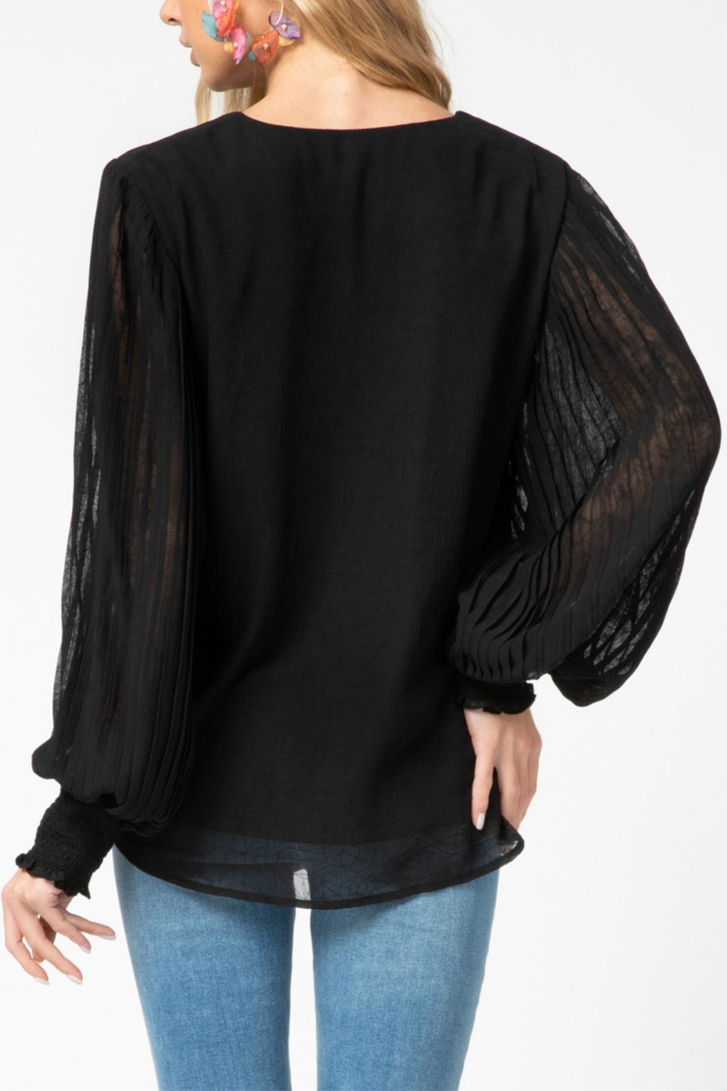 Entro Pleated Sleeve Top - Back Cropped Image