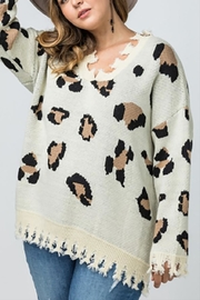 Entro Plus Leopard Sweater - Front cropped