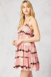 Entro Printed V-Neck Sleeveless Tiered Dress - Other