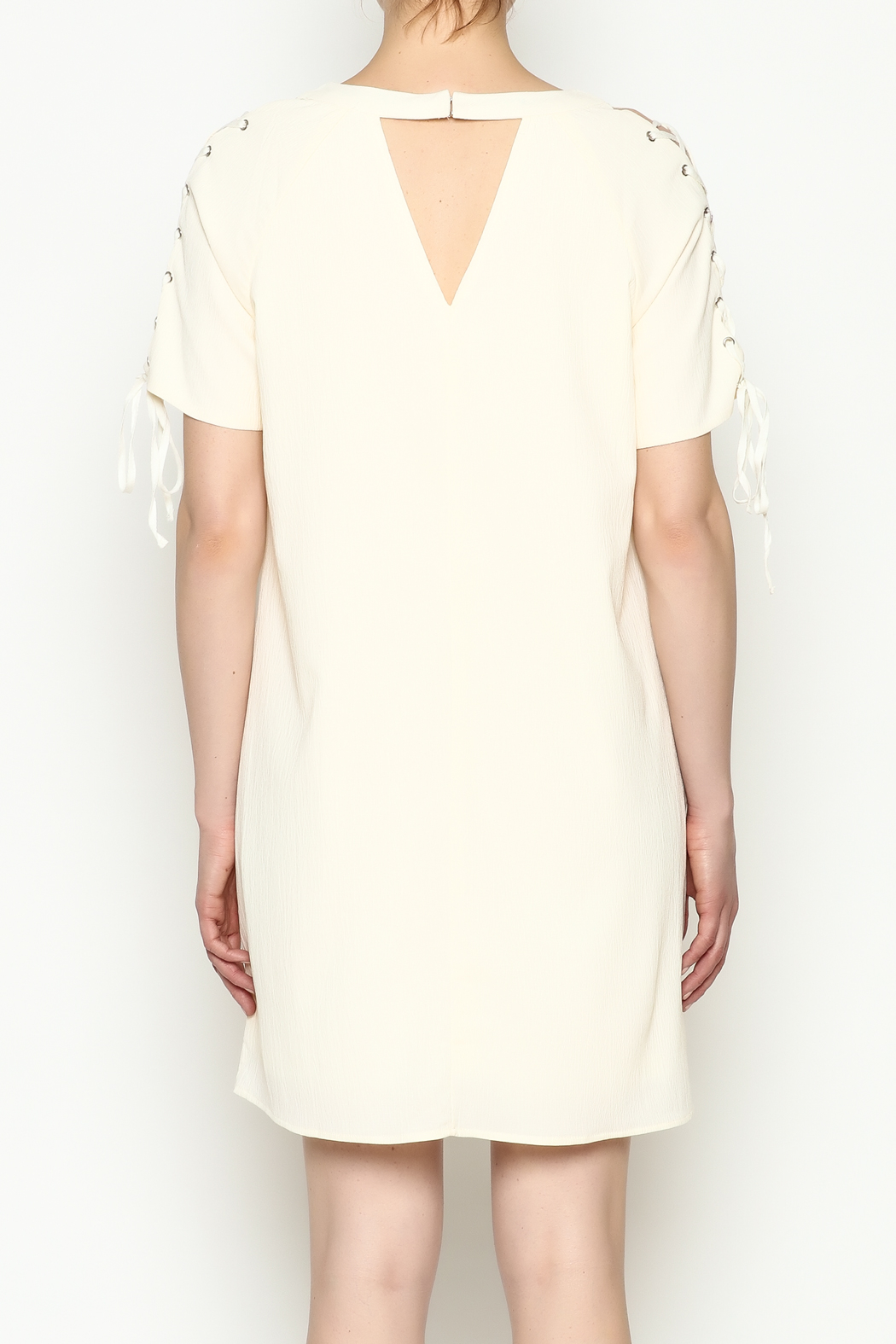 Entro Tie Sleeve Dress - Back Cropped Image