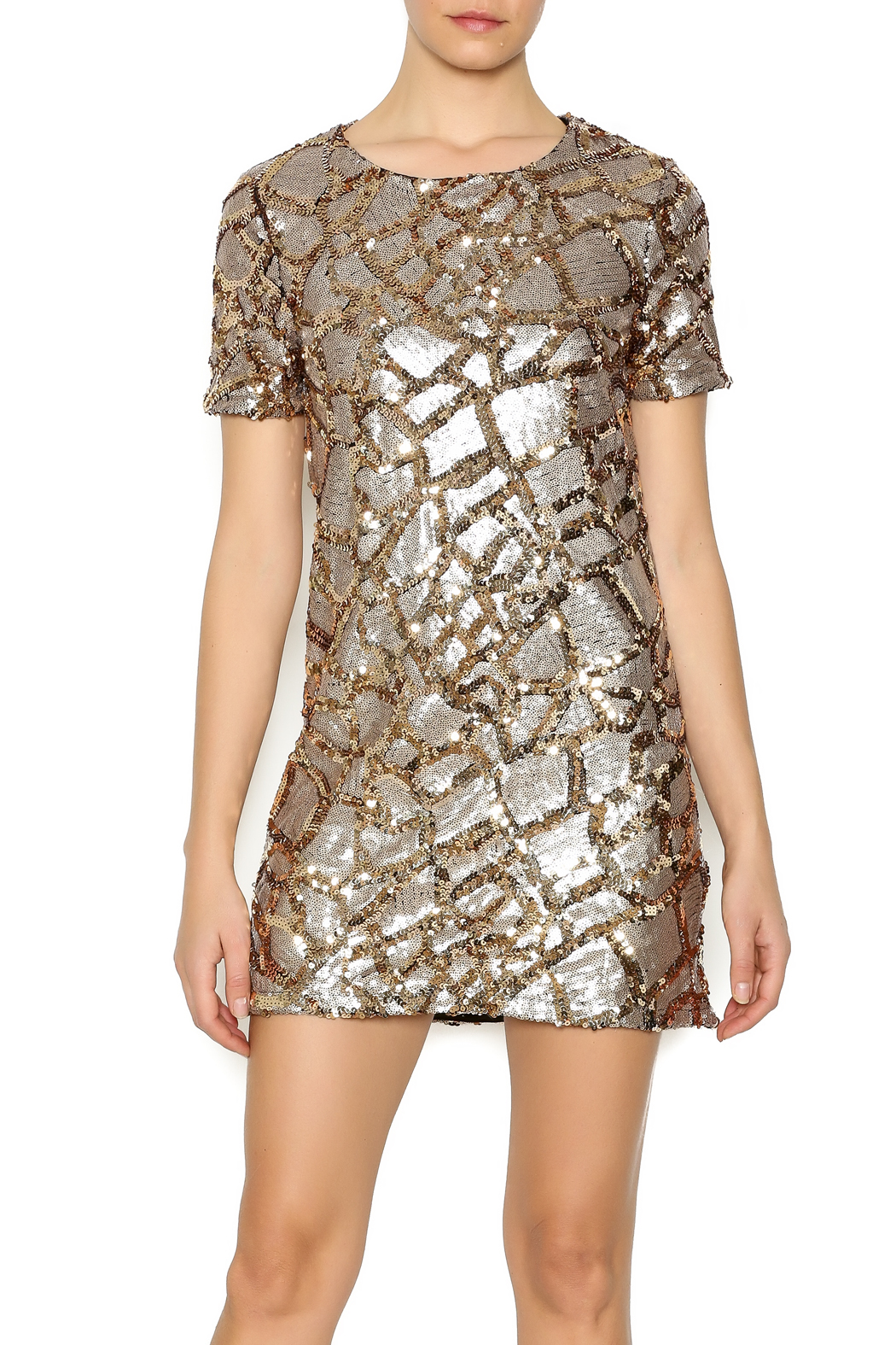 ENTRY Gold Sequin Dress - Main Image