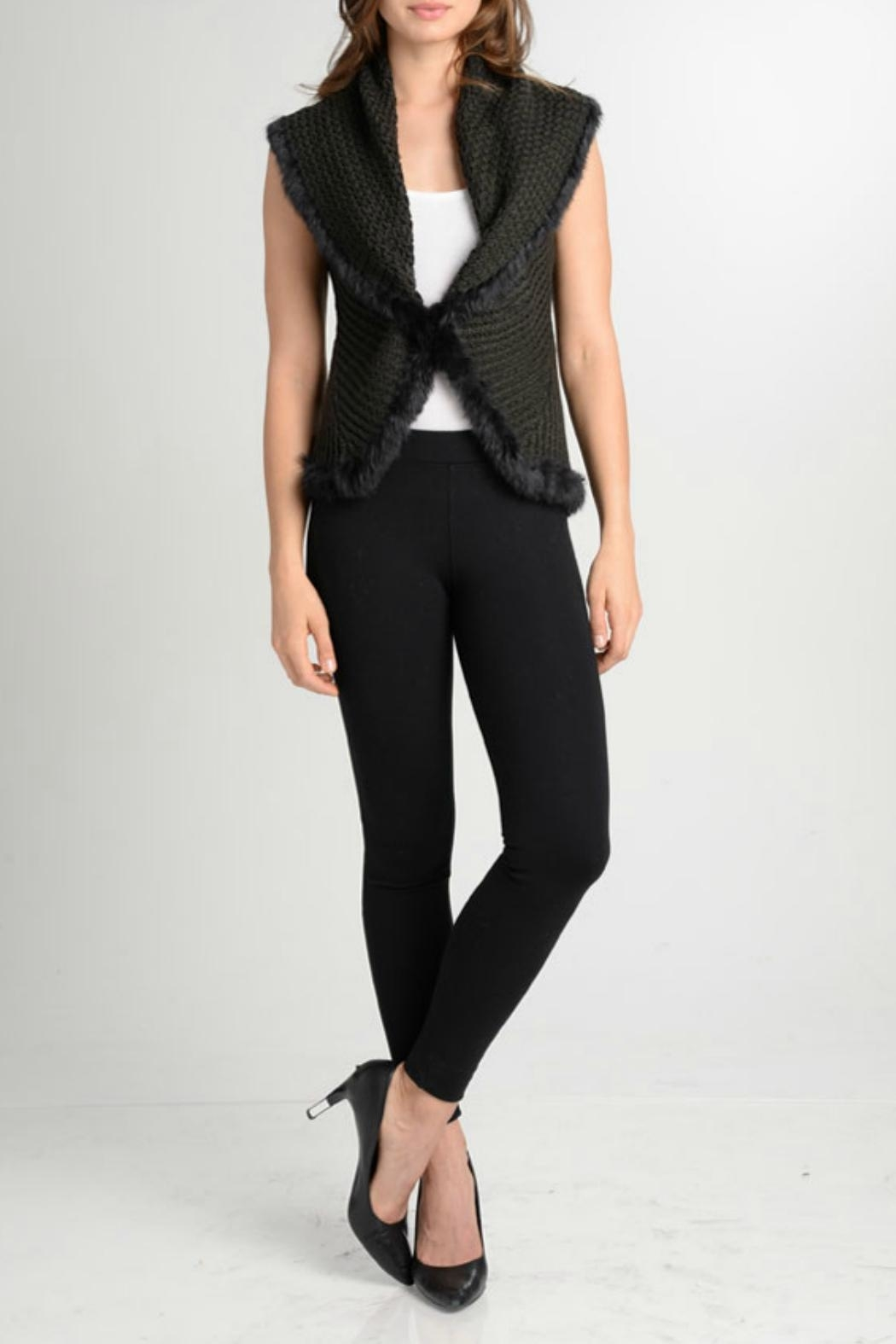 love token Enzo Vest with Fur Trim - Front Cropped Image