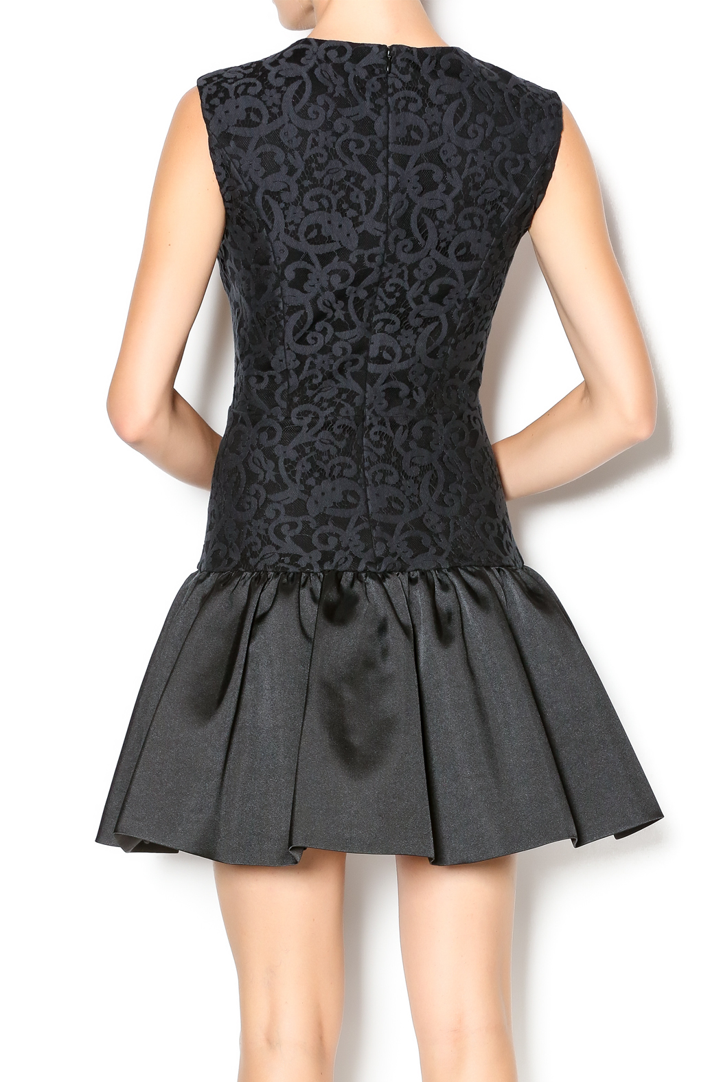 Erin Fetherston Holly Dress - Back Cropped Image