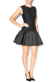 Erin Fetherston Holly Dress - Front full body