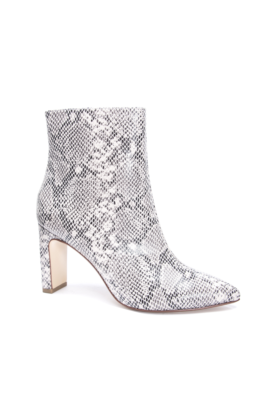 Chinese Laundry Erin Snake Bootie - Front Full Image