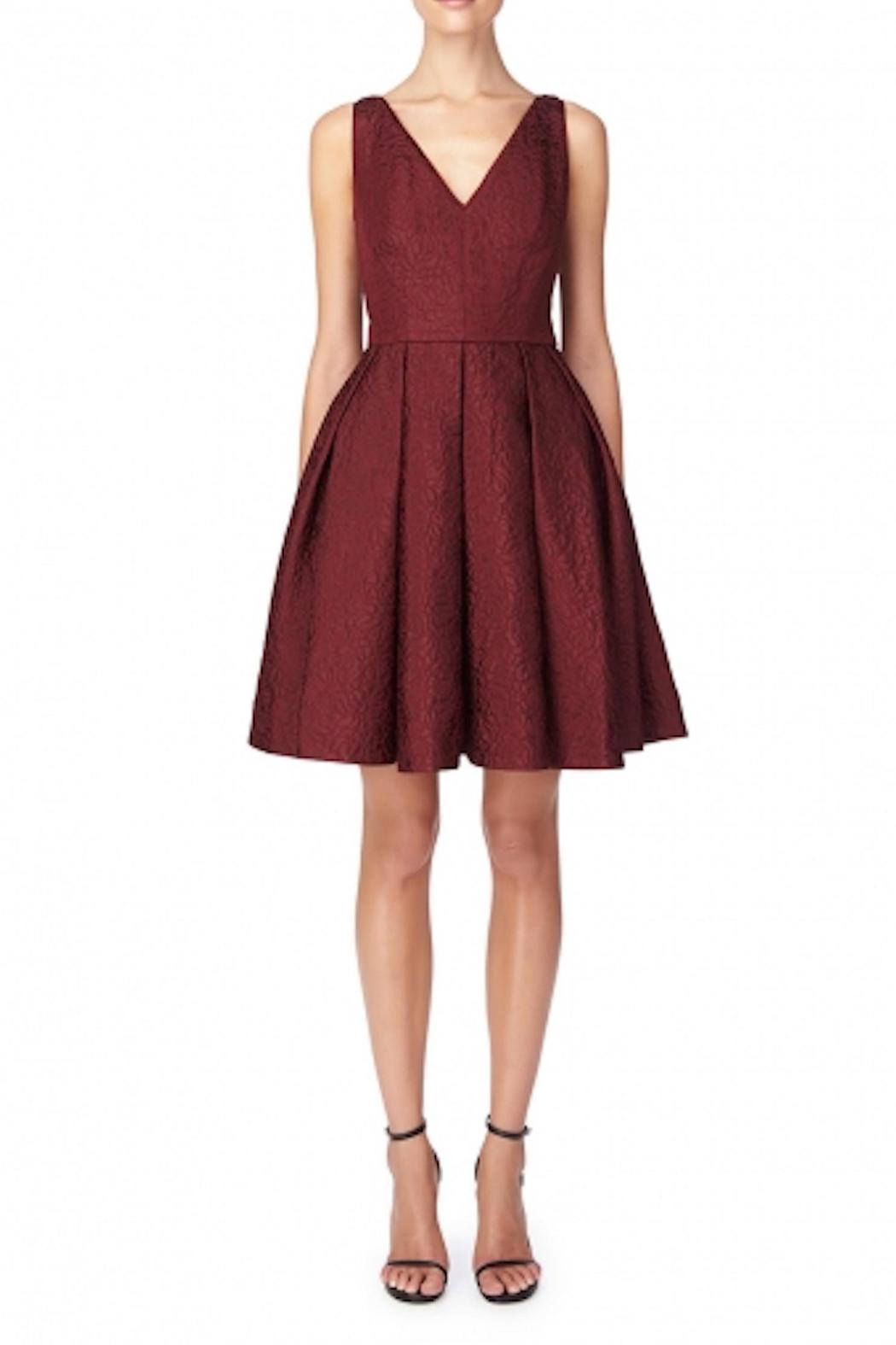 Erin Fetherston Coco Crimson Dress - Front Cropped Image