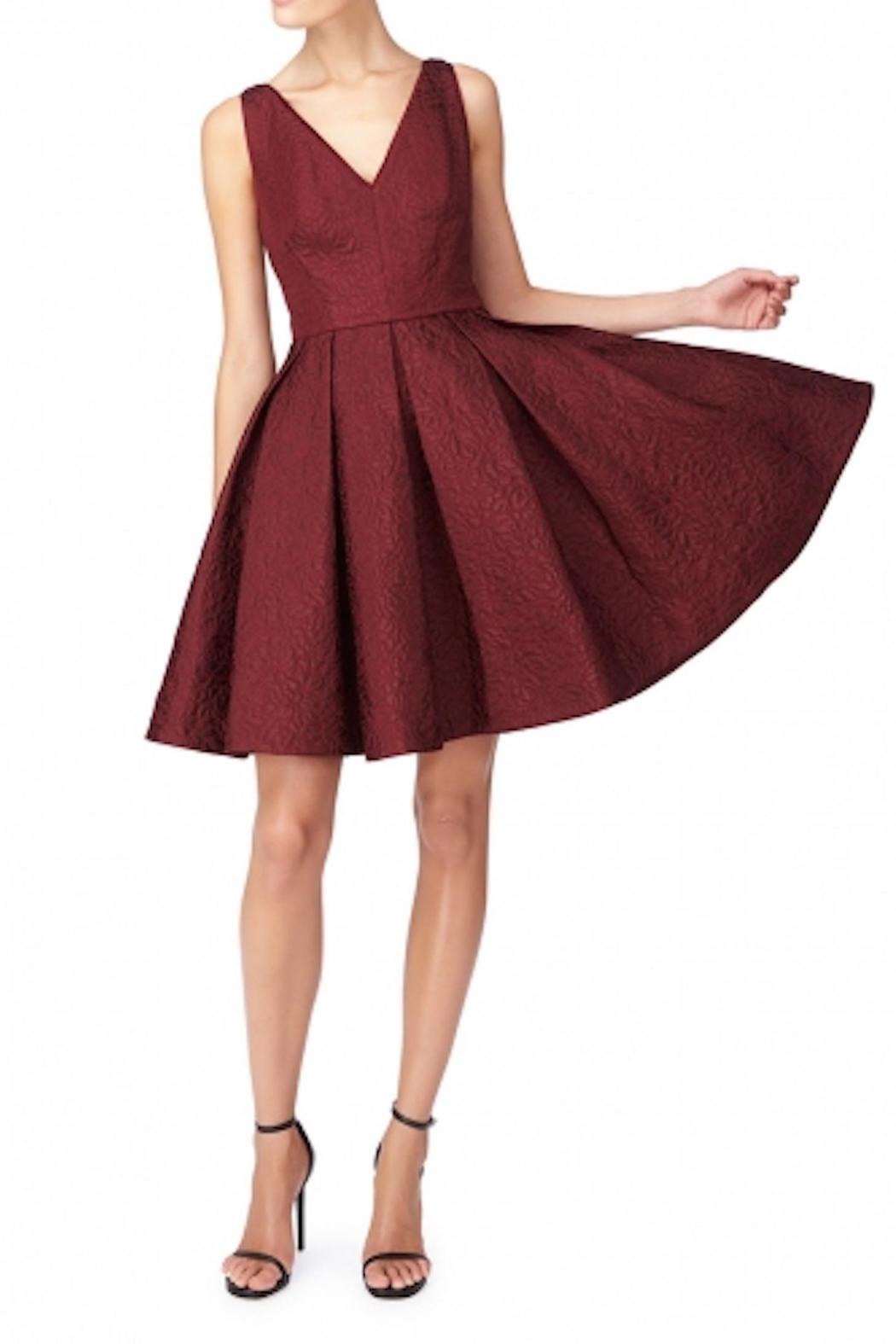 Erin Fetherston Coco Crimson Dress - Front Full Image