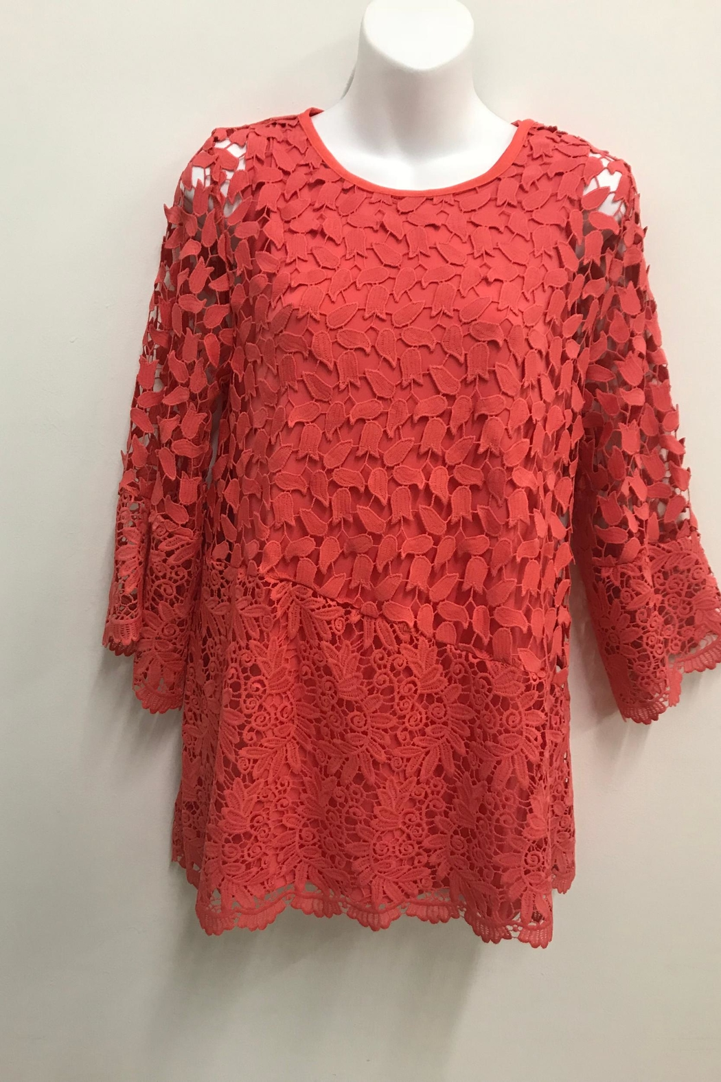 Erin London Coral Lace Tunic - Main Image
