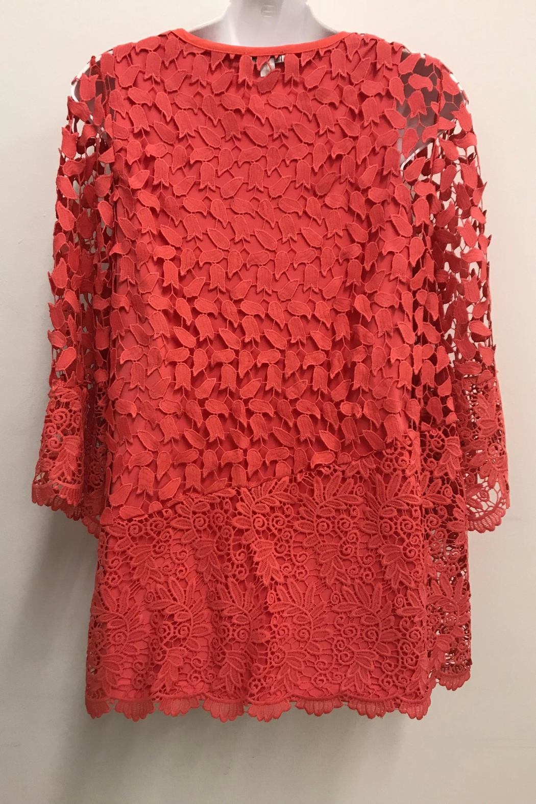 Erin London Coral Lace Tunic - Front Full Image