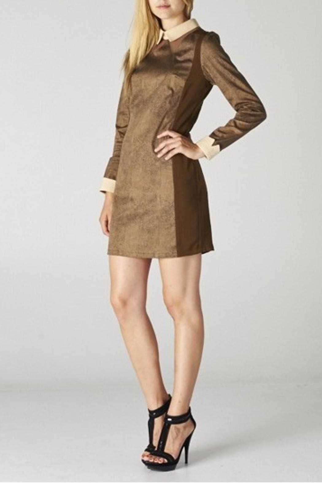 Esley Collar Brown Dress - Front Cropped Image
