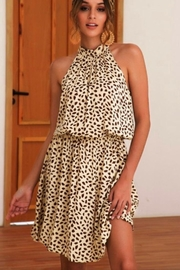 Esley Animal Print Dress - Product Mini Image