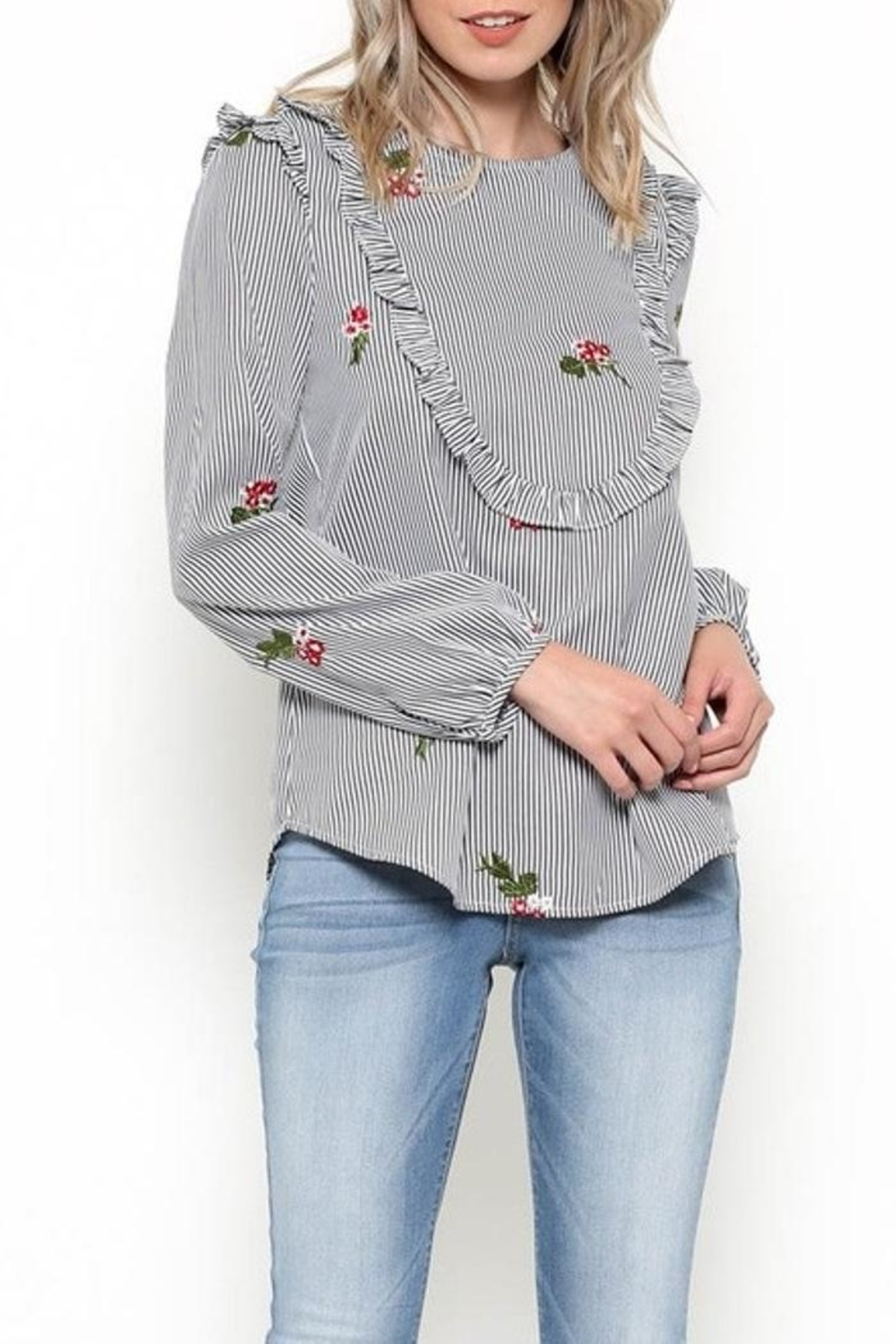 Esley Embroidered Bib Top - Front Full Image