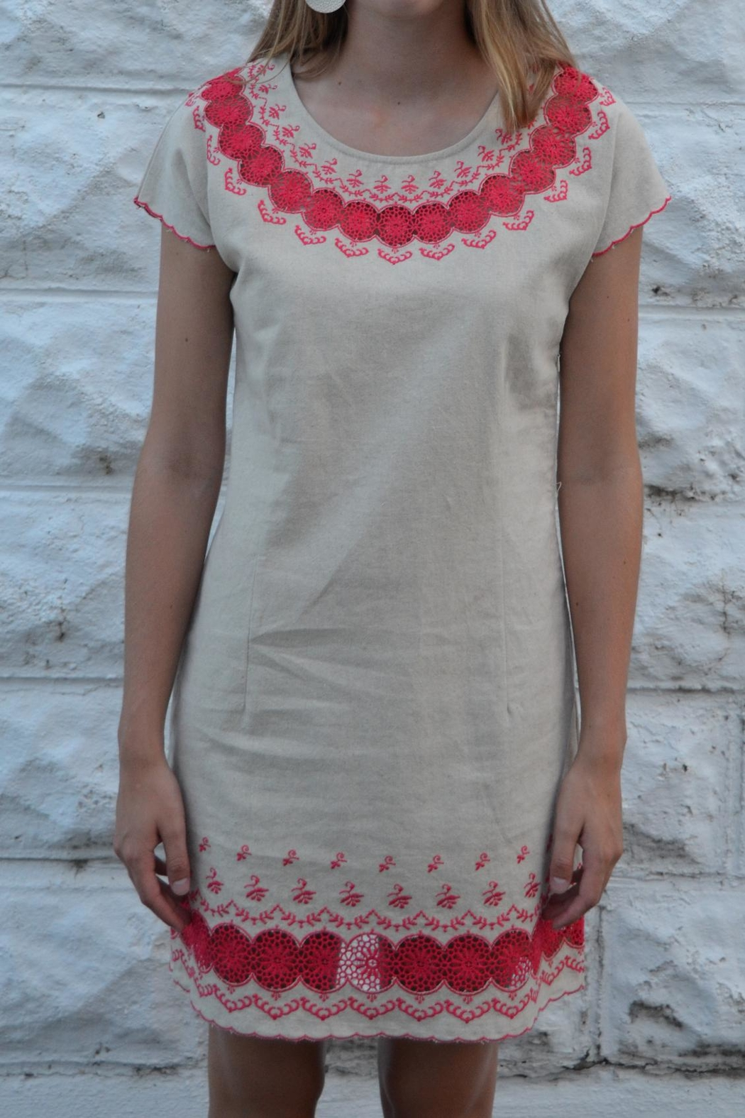 Esley Tan Embroidered Dress - Main Image