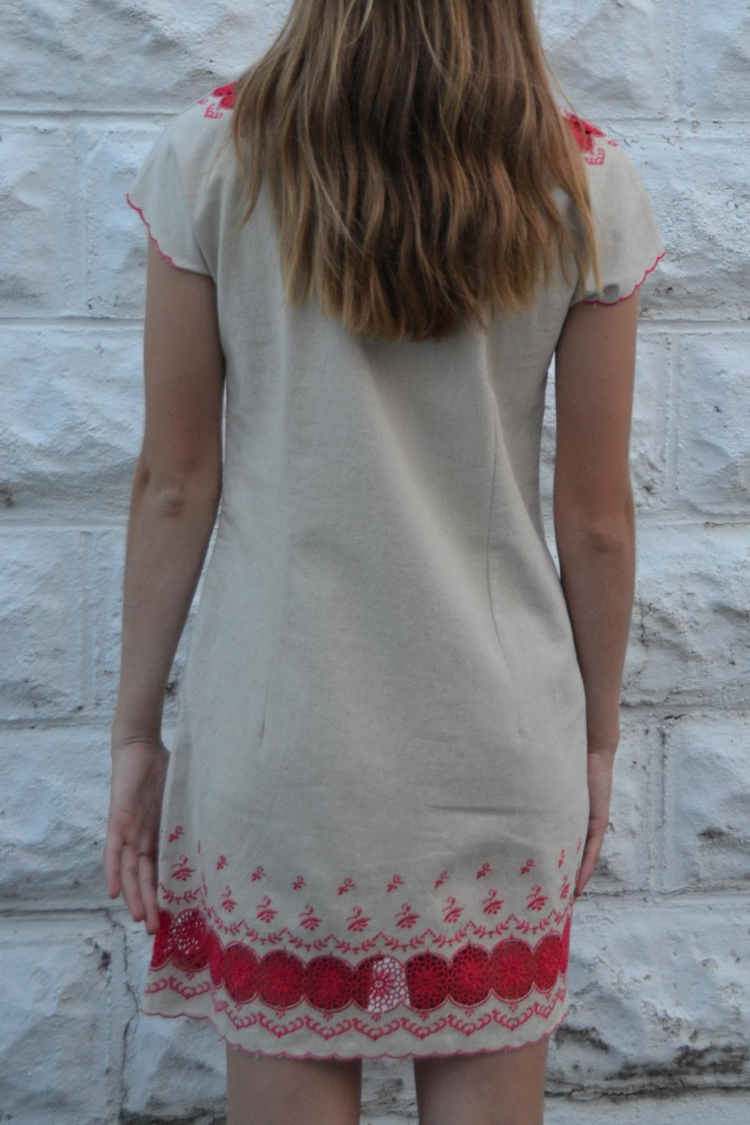 Esley Tan Embroidered Dress - Front Full Image