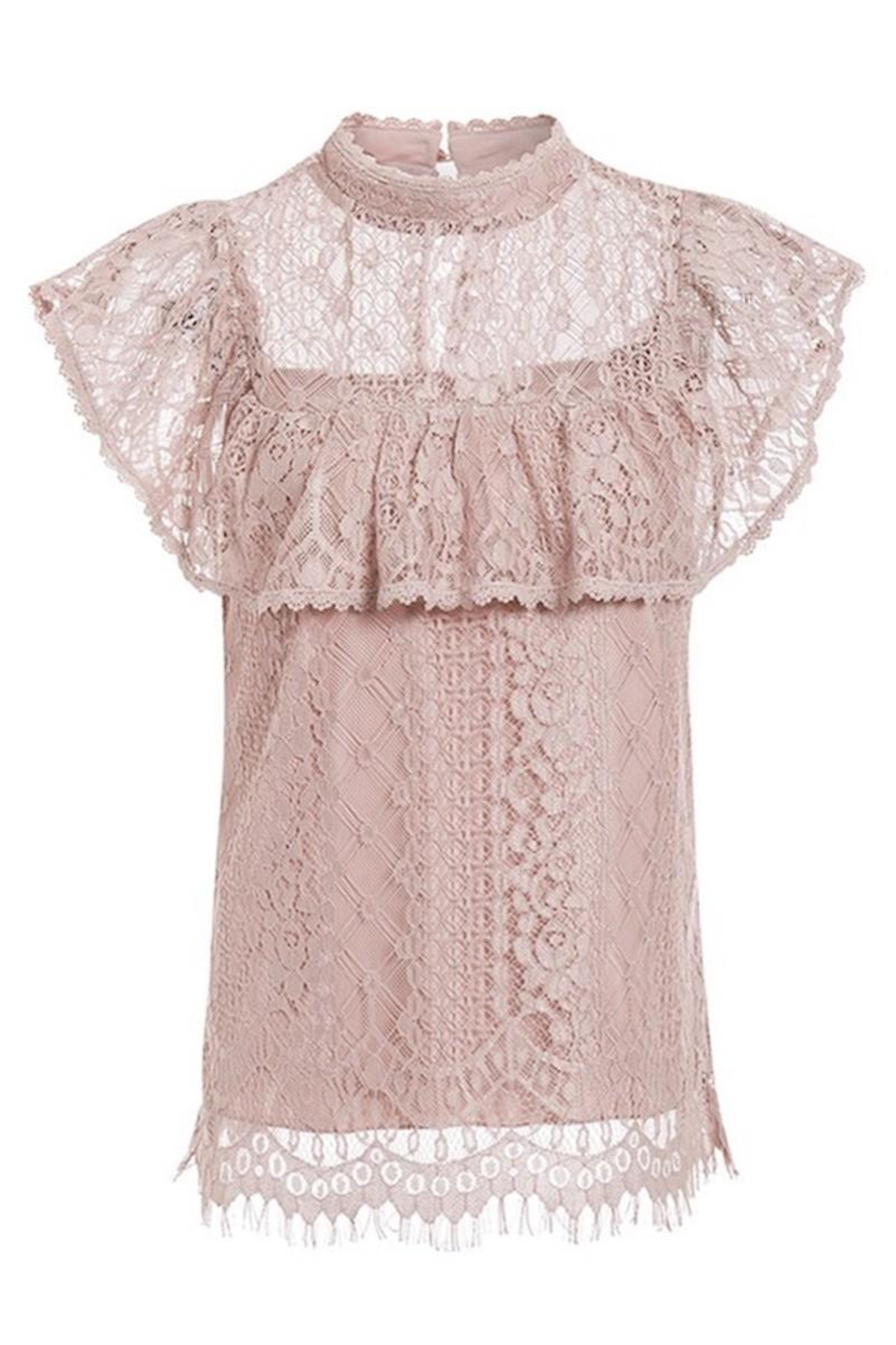 Esley Collection Blush Lace Detail Blouse - Back Cropped Image