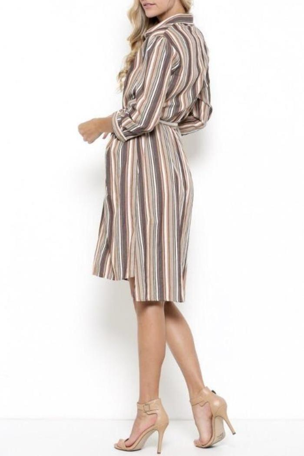 Esley Collection Ruffle Stripe Dress - Front Full Image