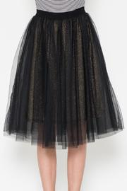 Esley Collection Mesh Skirt - Product Mini Image