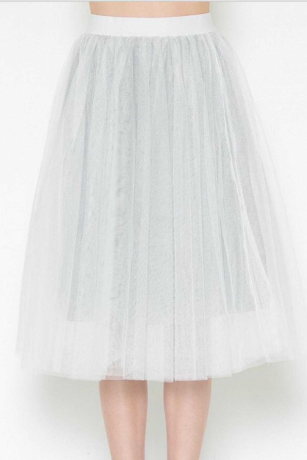 Esley Collection Tulle Aline Skirt - Back Cropped Image