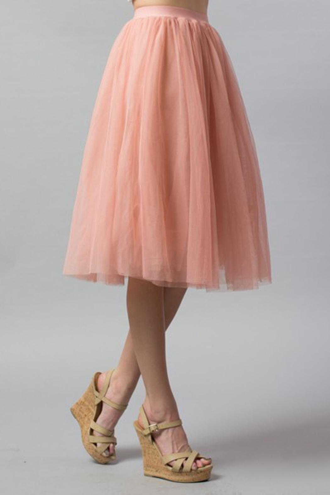 Esley Collection Tulle Aline Skirt - Main Image