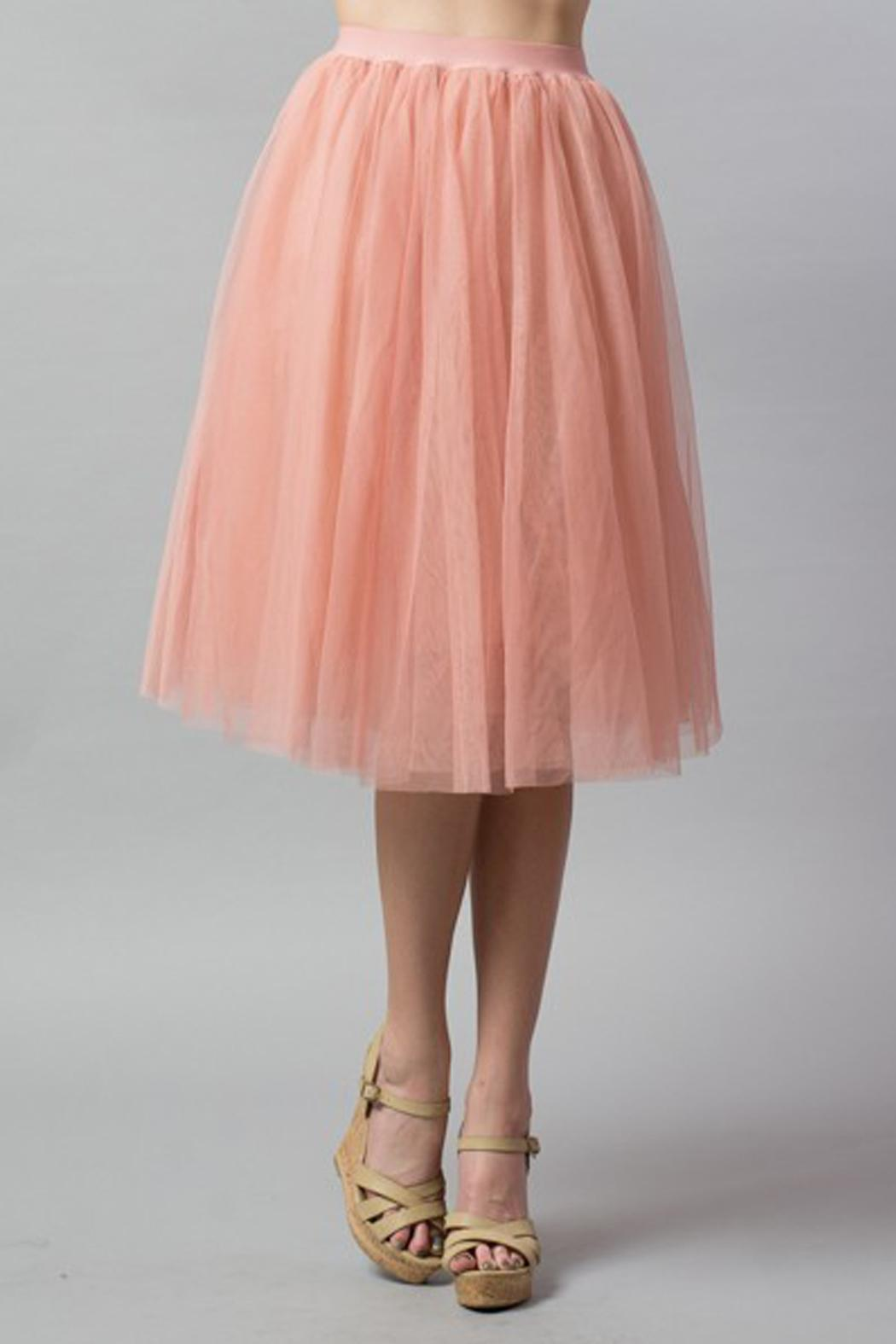Esley Collection Tulle Aline Skirt - Front Full Image