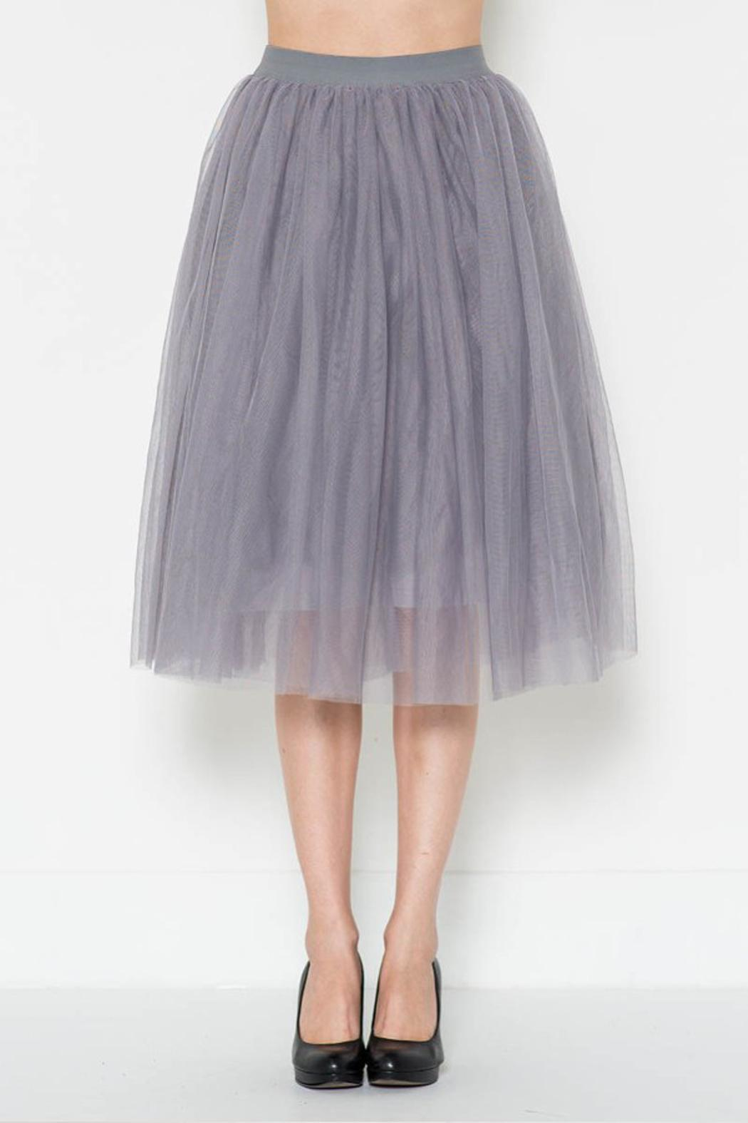 Esley Collection Tulle Aline Skirt - Front Cropped Image