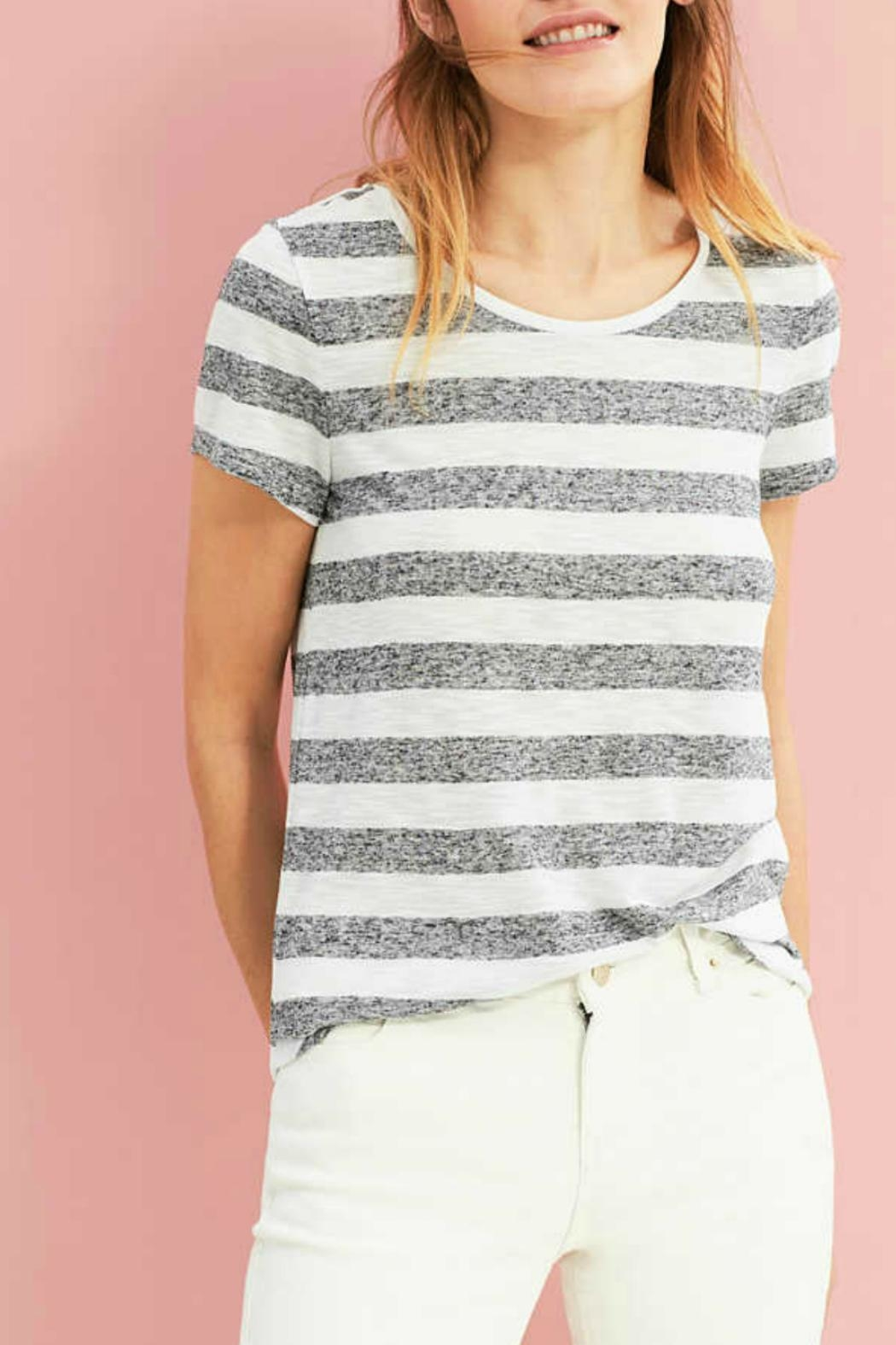 Esprit Striped Tee - Front Cropped Image