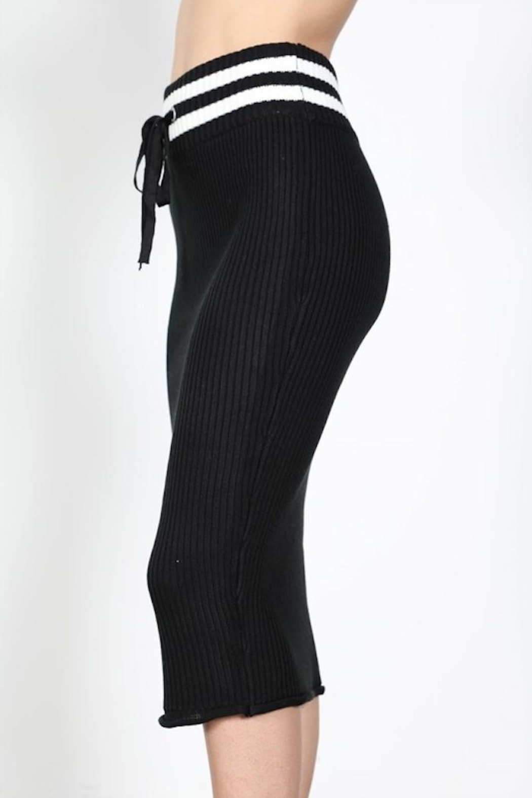 essue Bodycon Stripe Skirt - Back Cropped Image