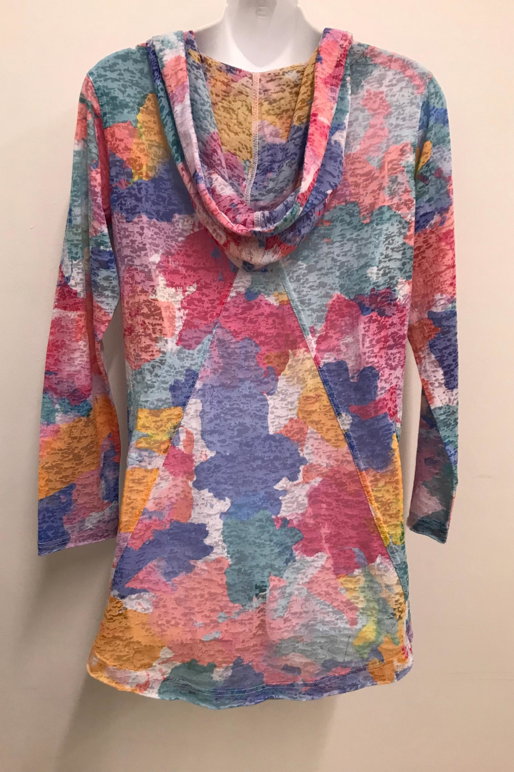 Ethyl Colorful Burnout Hoodie - Front Full Image