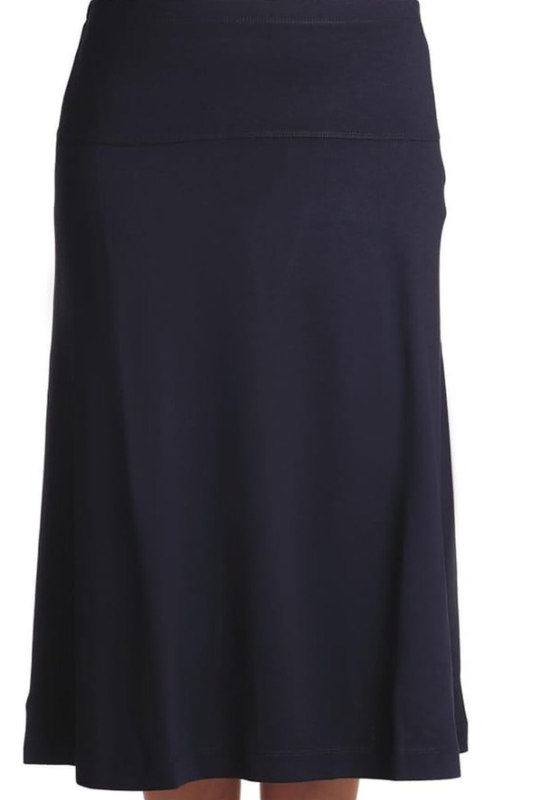 Euro Design A Line Skirt - Front Cropped Image
