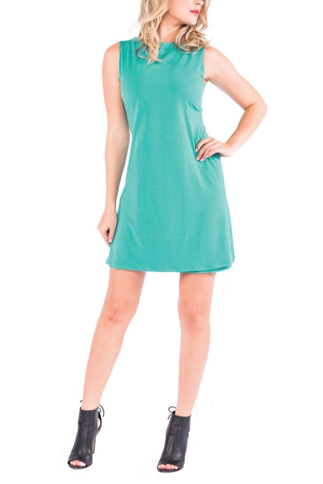 Eva Varro Bateau Mini Dress - Front Cropped Image