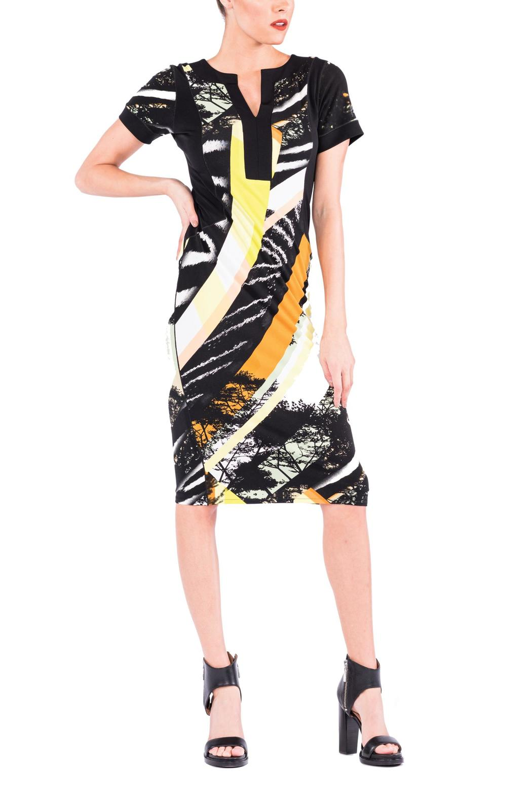 Eva Varro Color Block Dress - Front Cropped Image