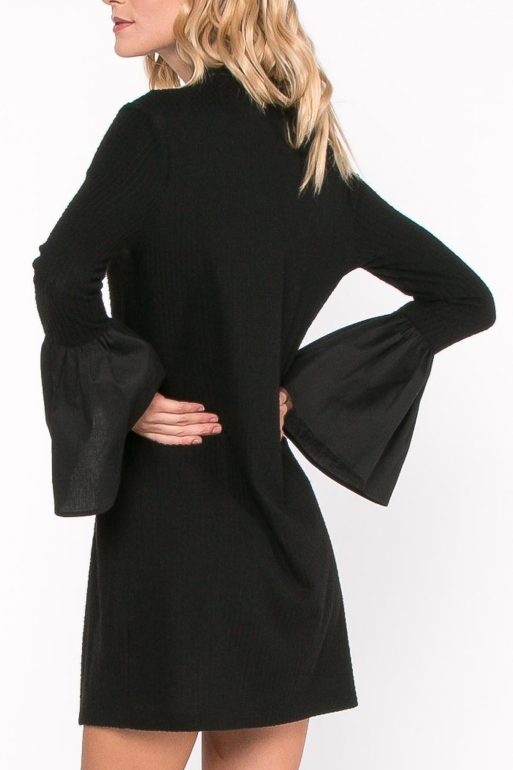 Everly Bell Sleeve Dress - Back Cropped Image