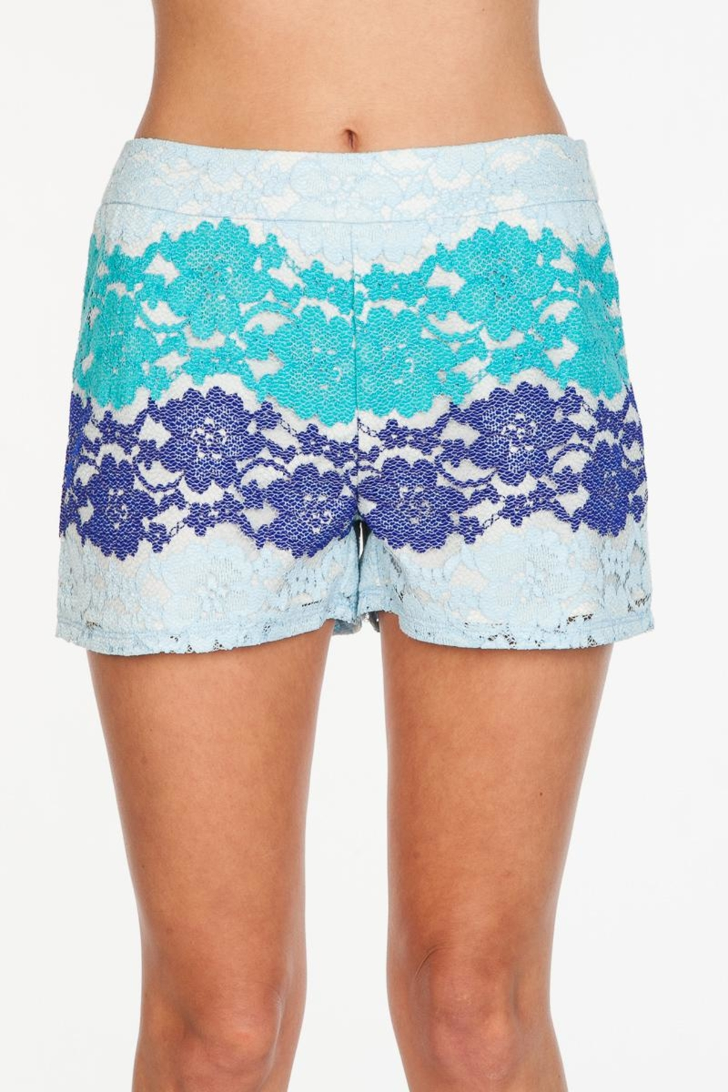 Everly Blue Lace Shorts - Front Full Image