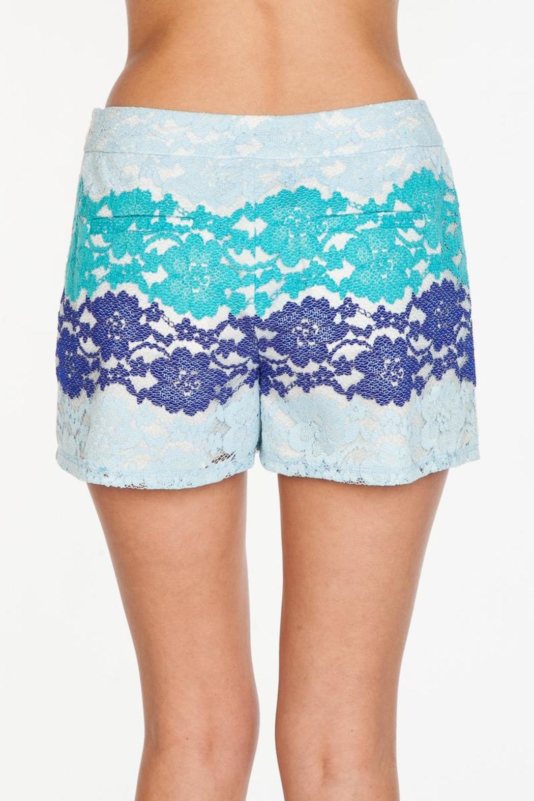 Everly Blue Lace Shorts - Side Cropped Image