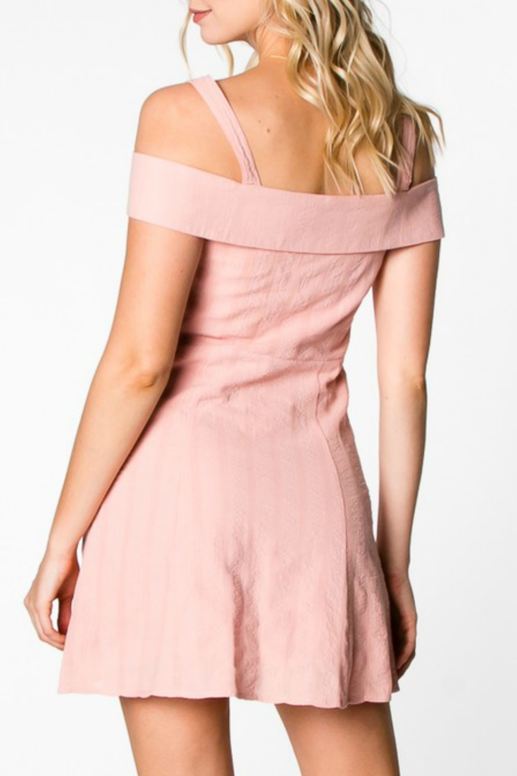 Everly Button Down Dress - Back Cropped Image