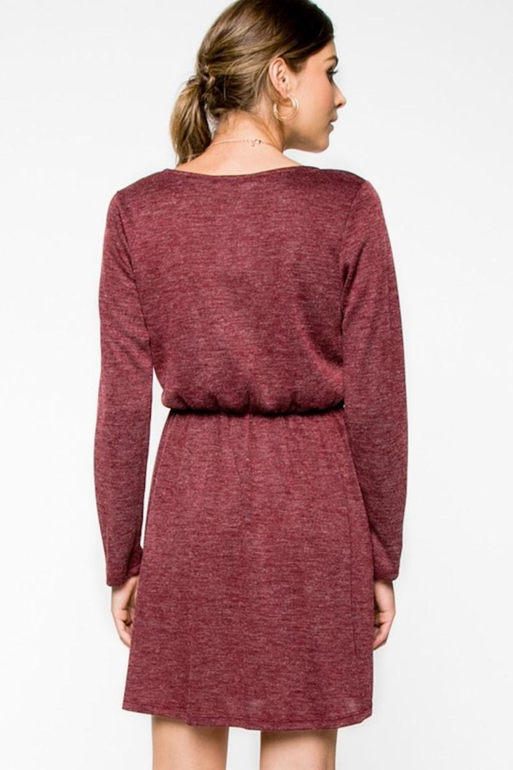 Everly Cranbery Wine Dress - Back Cropped Image