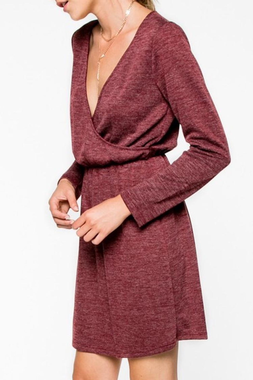 Everly Cranbery Wine Dress - Side Cropped Image