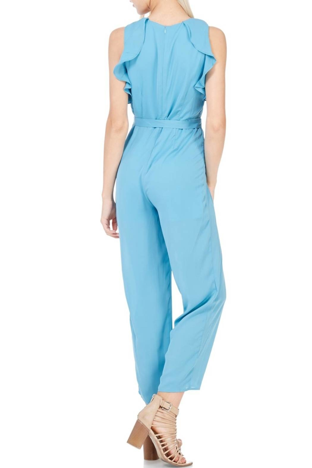Everly Dusty Blue Lined Jumpsuit - Back Cropped Image