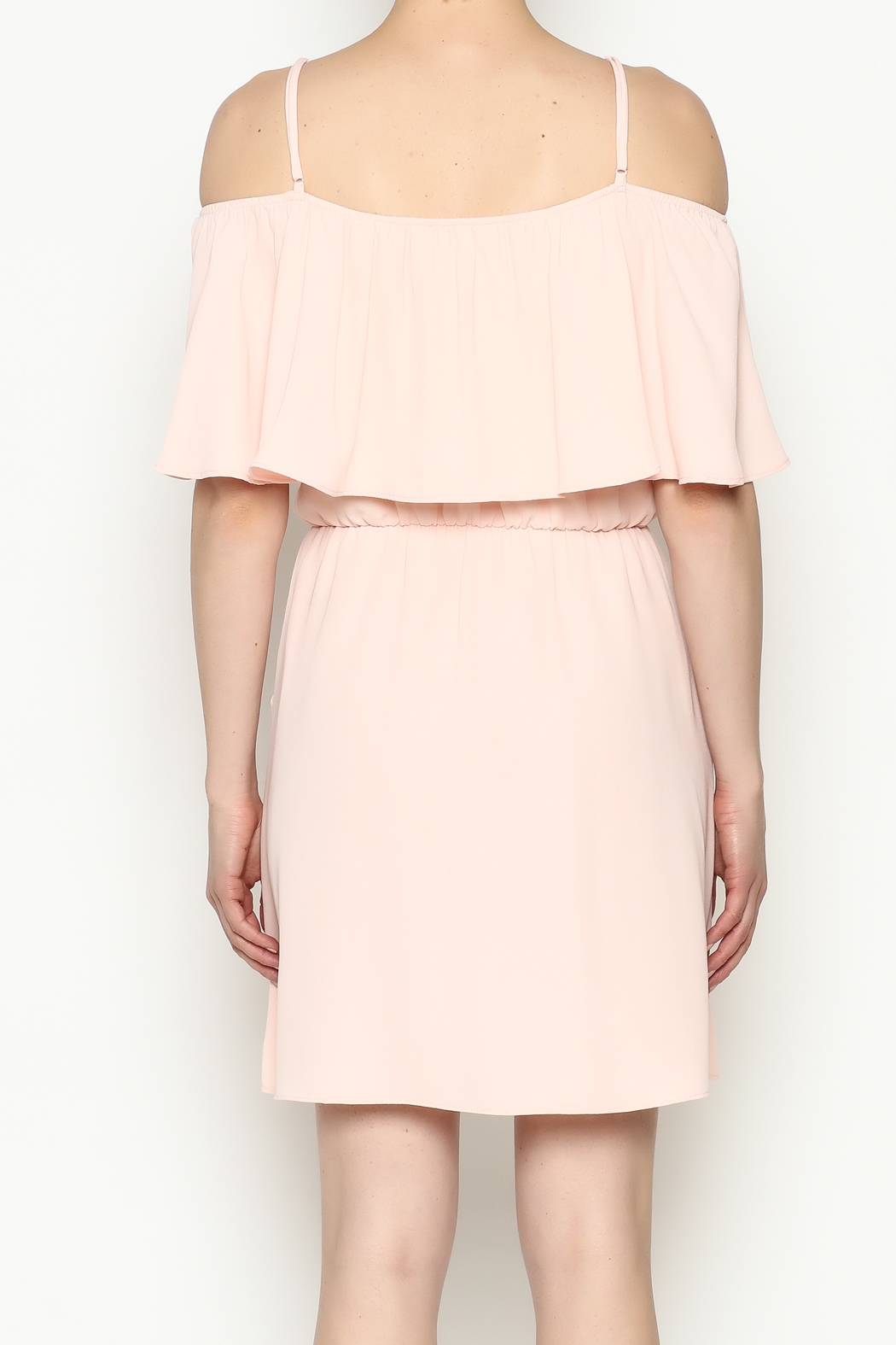 Everly Front Ruffle Dress - Back Cropped Image