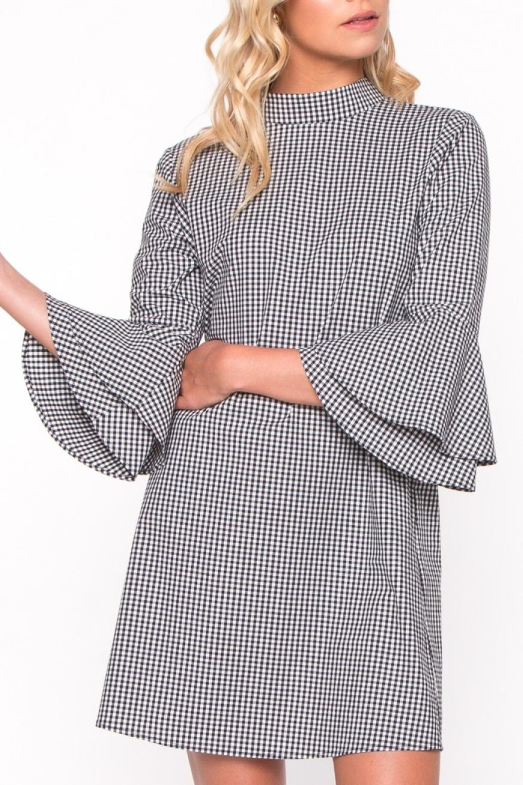 Everly Gingham Bell Sleeve Dress - Main Image