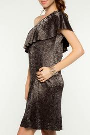 Everly Merry Metallic Dress - Back cropped