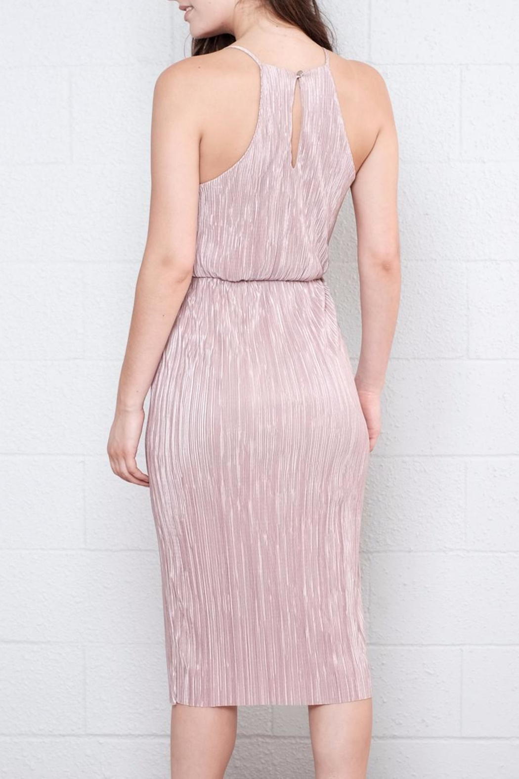 Everly Pleated Midi Dress - Back Cropped Image