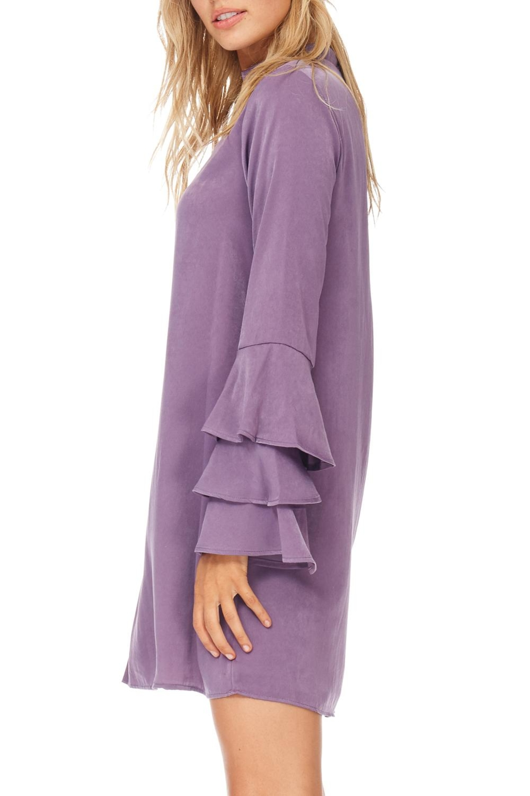 Everly Plum Silky Tiered Sleeve Dress - Side Cropped Image