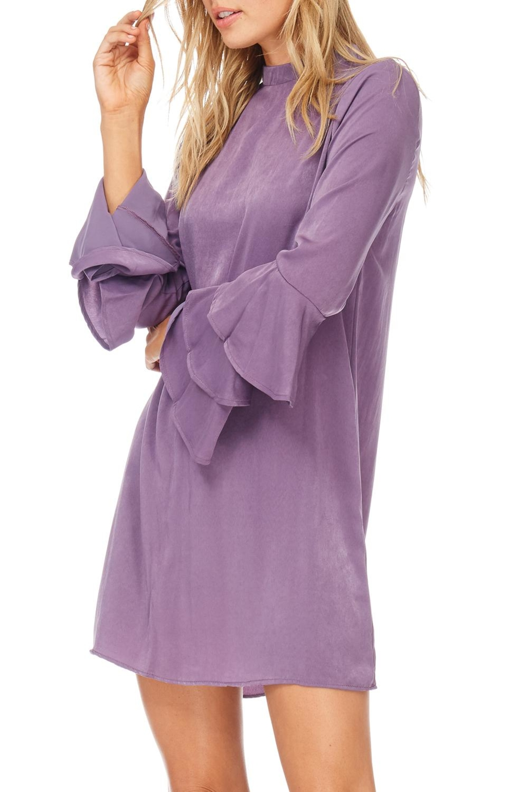 Everly Plum Silky Tiered Sleeve Dress - Main Image