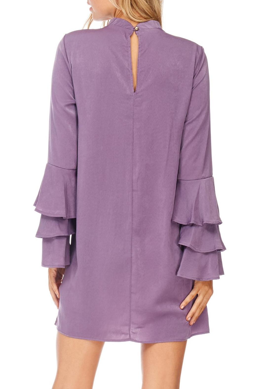 Everly Plum Silky Tiered Sleeve Dress - Back Cropped Image