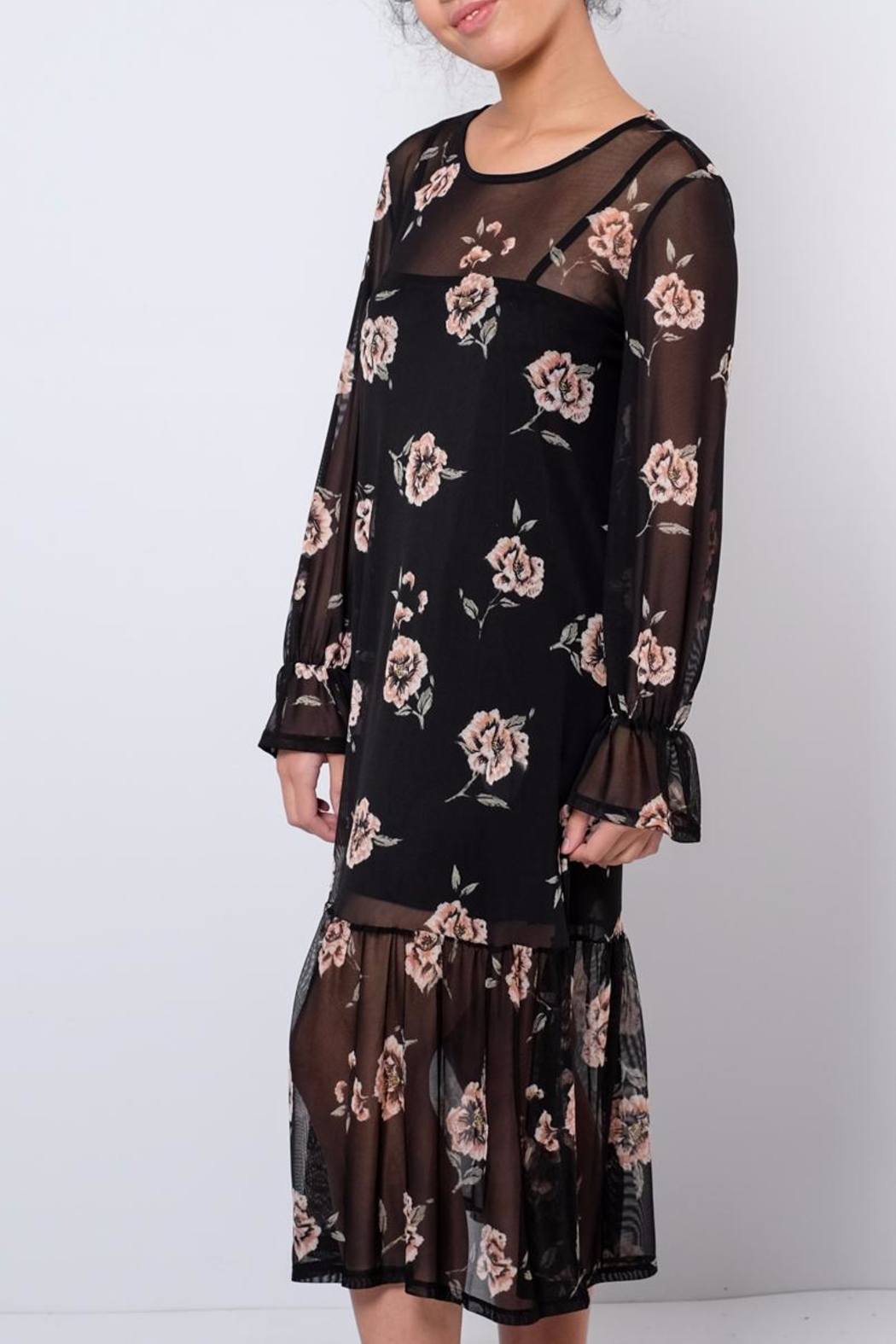 Everly Printed Mesh Dress - Front Full Image