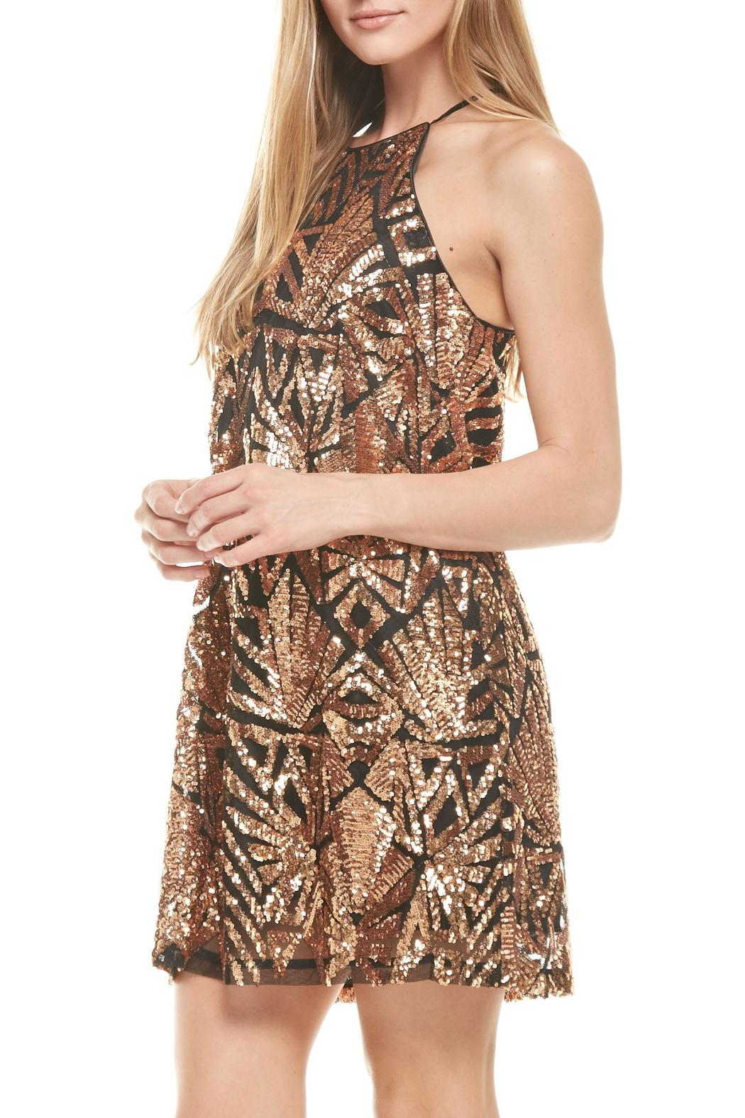 Everly Rose-Gold Sequins Dress - Side Cropped Image