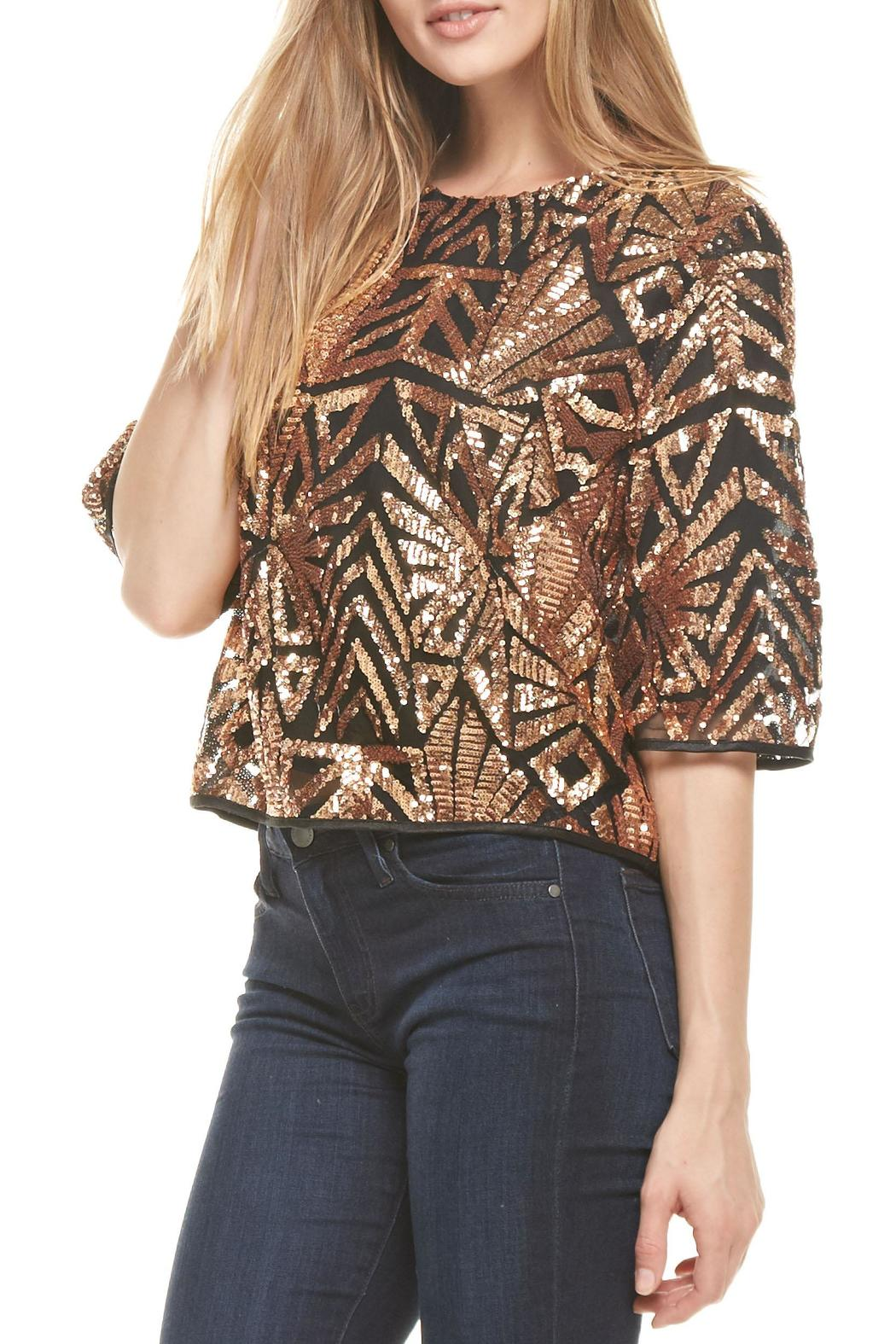 Everly Rose-Gold Sequins Top - Front Full Image