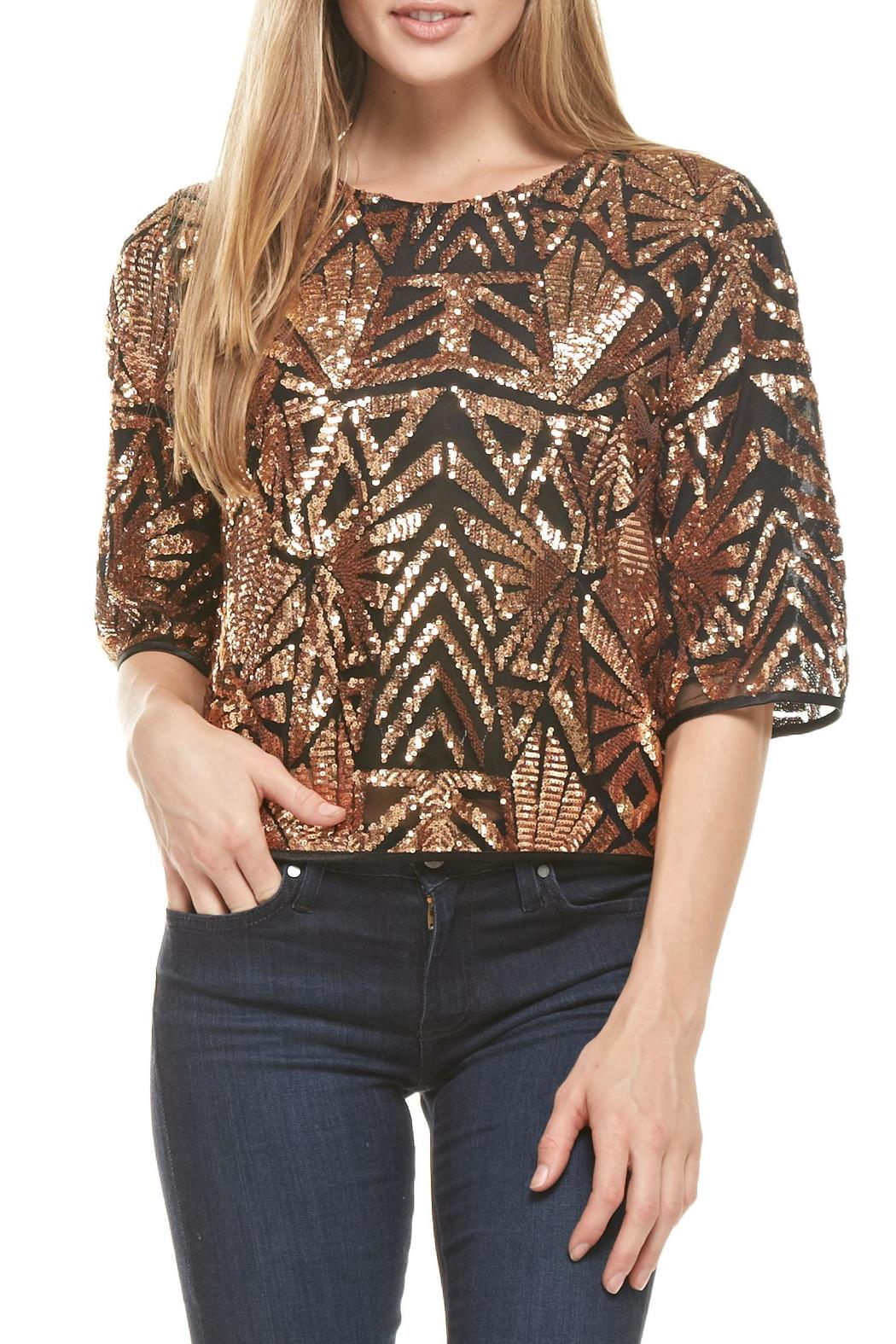 Everly Rose-Gold Sequins Top - Main Image